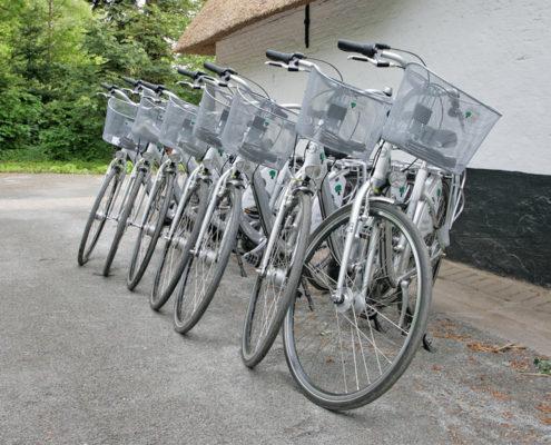 fietsen - melkerij-peerdsbos